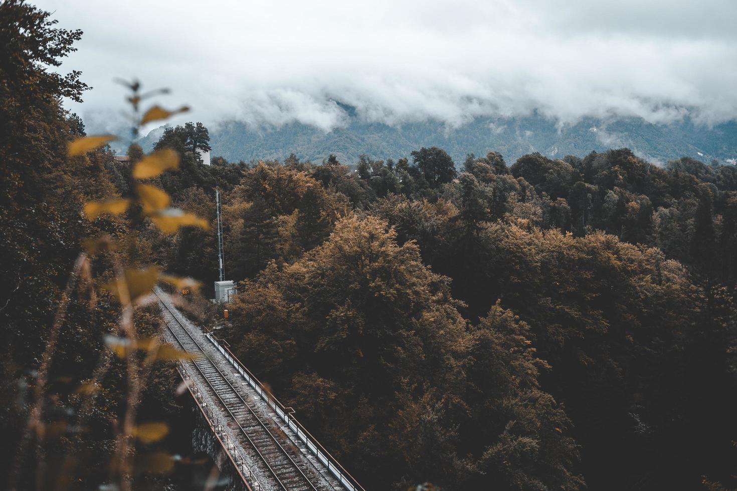 treinsporen dichtbij bos onder bewolkte hemel foto