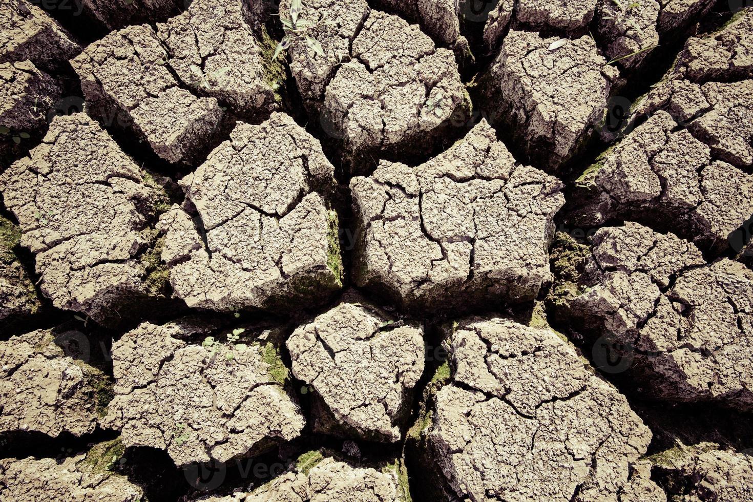 verdroogde landbouwgrond foto