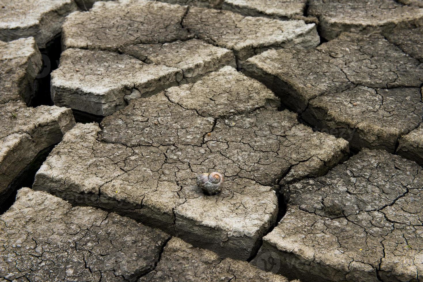 droge gebarsten aarde achtergrond, klei woestijn textuur foto
