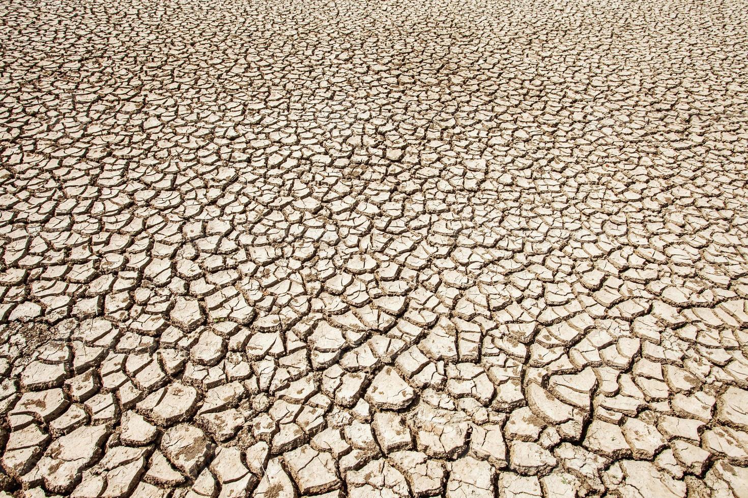 grond breken met hete zomerseizoen foto