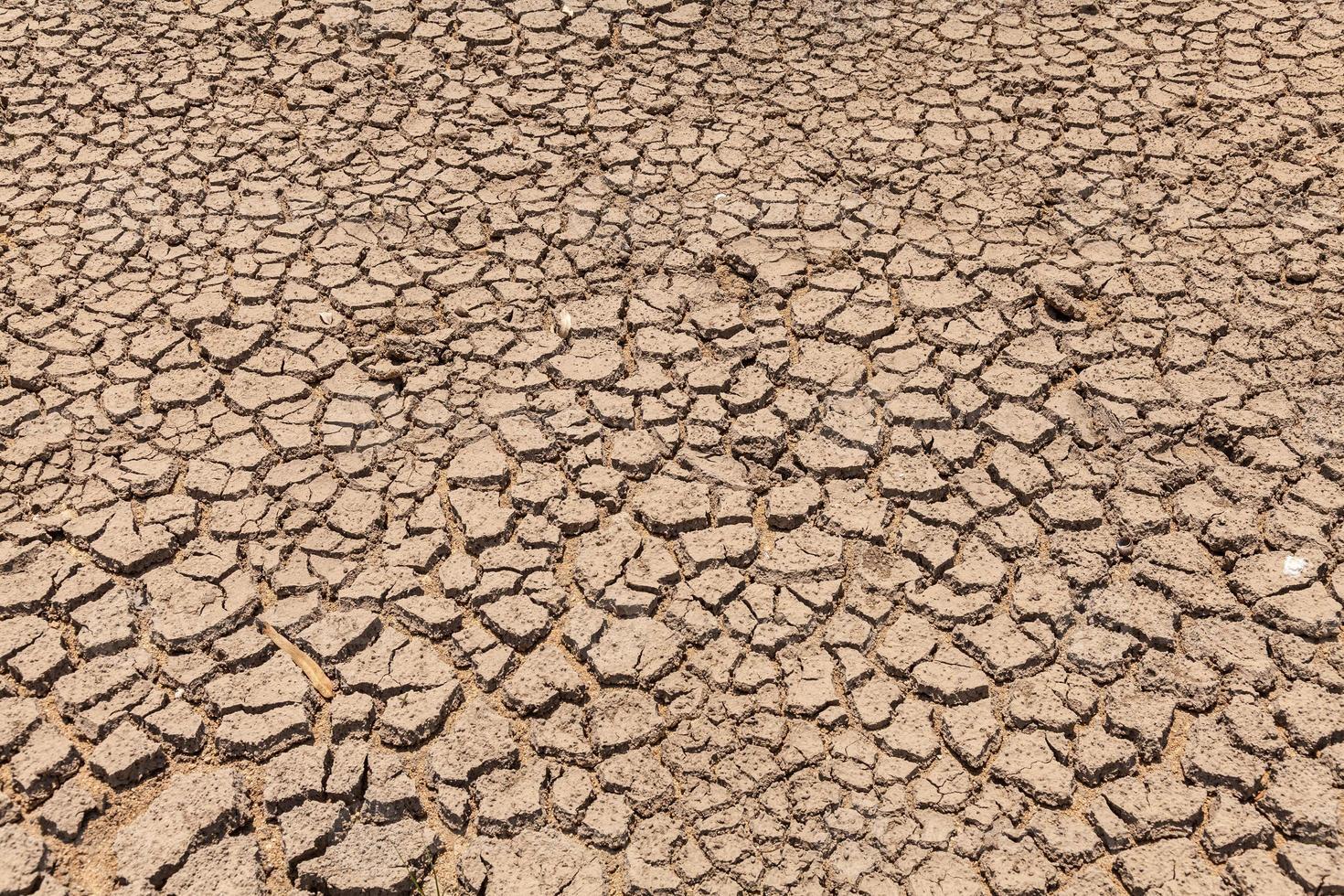 droogte gebarsten grond foto