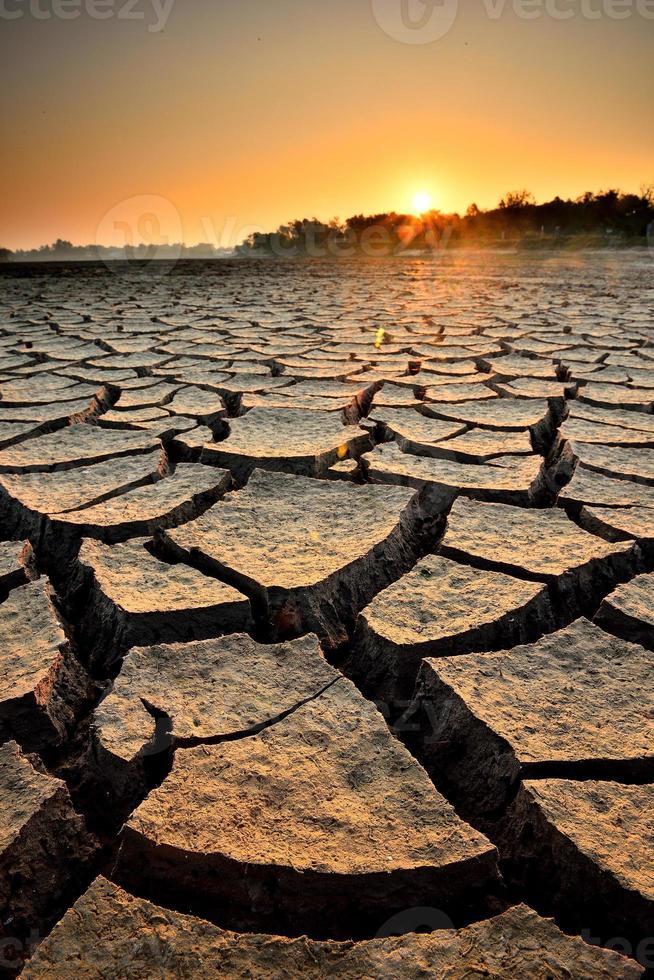 droogte land foto