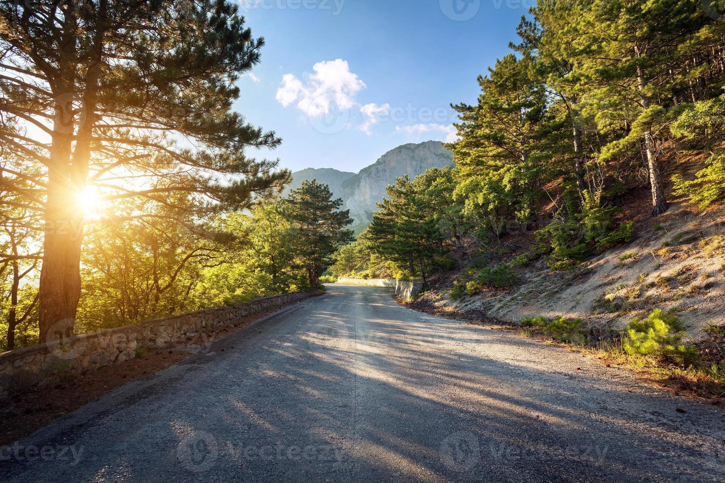 asfaltweg in zomer bos bij zonsondergang. bergen van de Krim foto