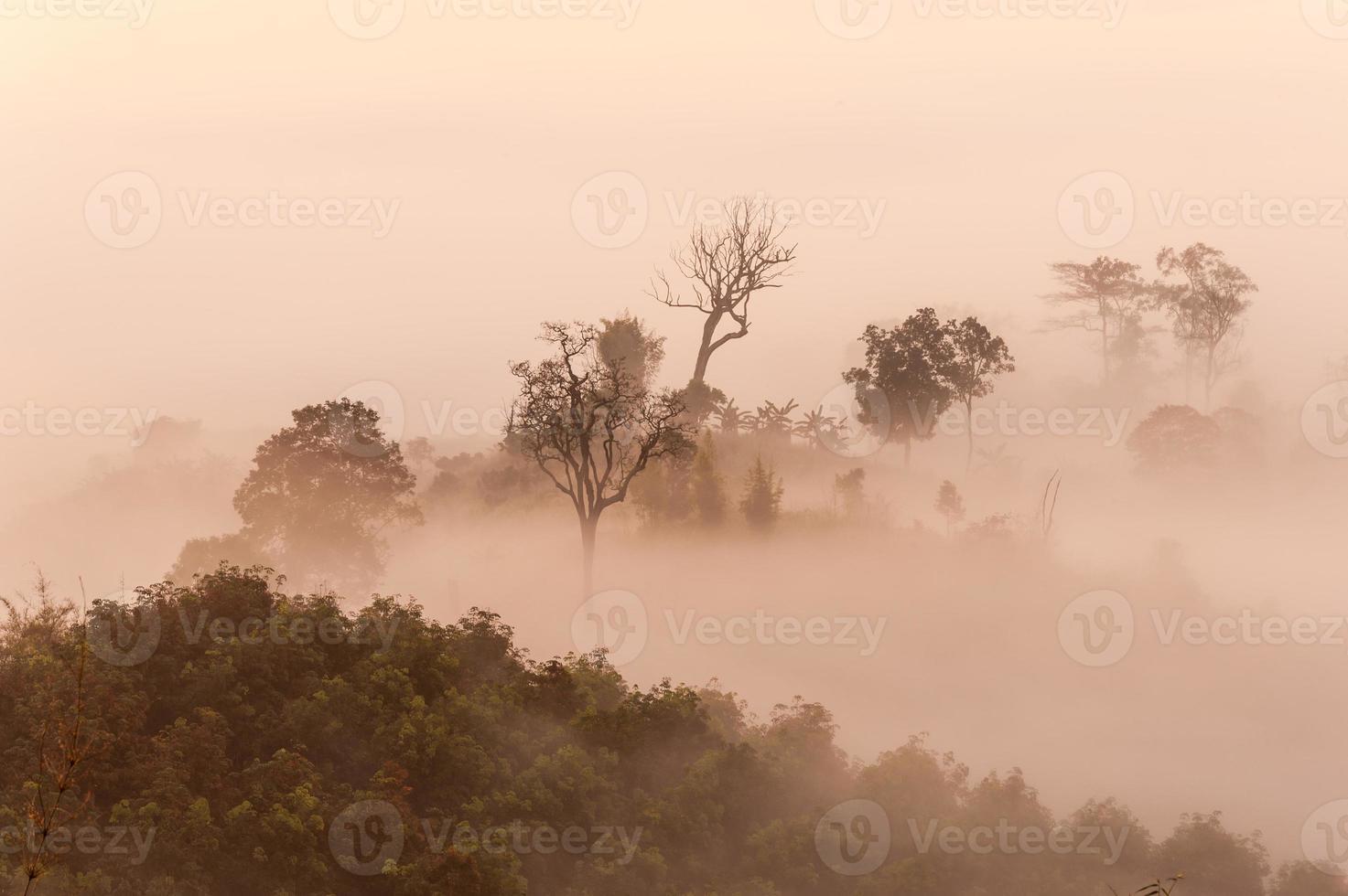 zonsopgang mist berg foto