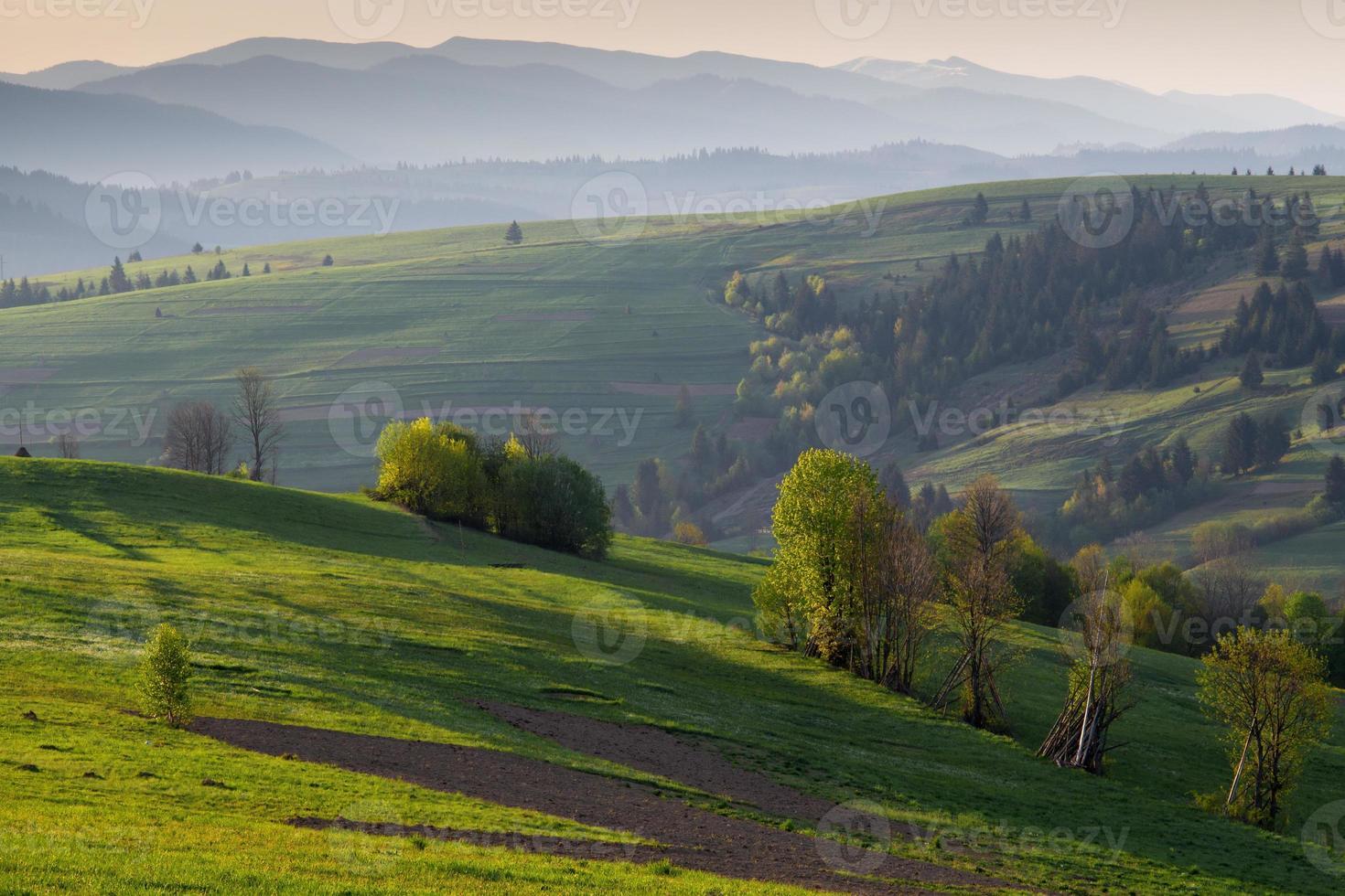 de mistige heuvels van de Karpaten bij zonsopgang foto