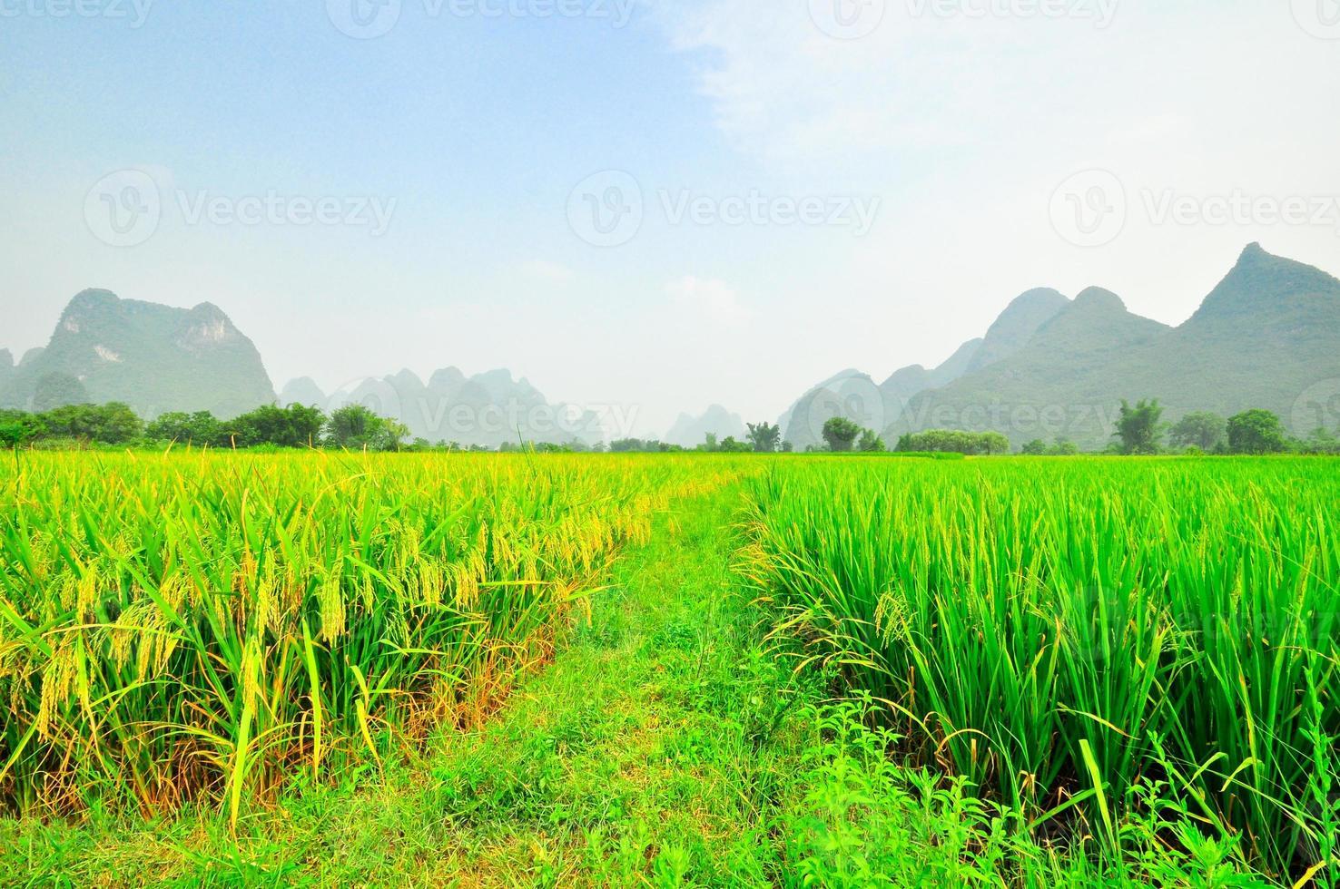 li rivier berglandschap in yangshuo guilin foto