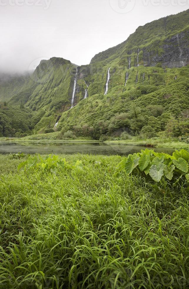 Azoren landschap in Flores Island. watervallen in pozo da alagoin foto
