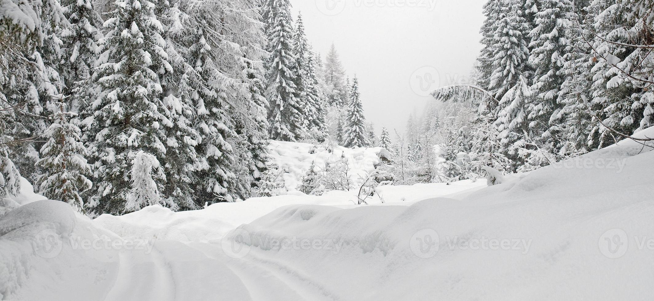 besneeuwde berg in de winter foto