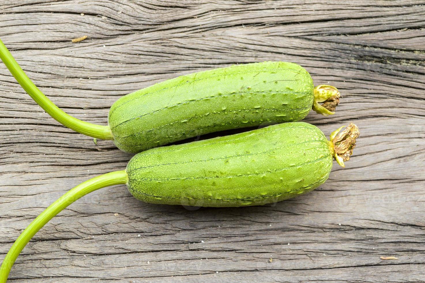 groene spons kalebas foto