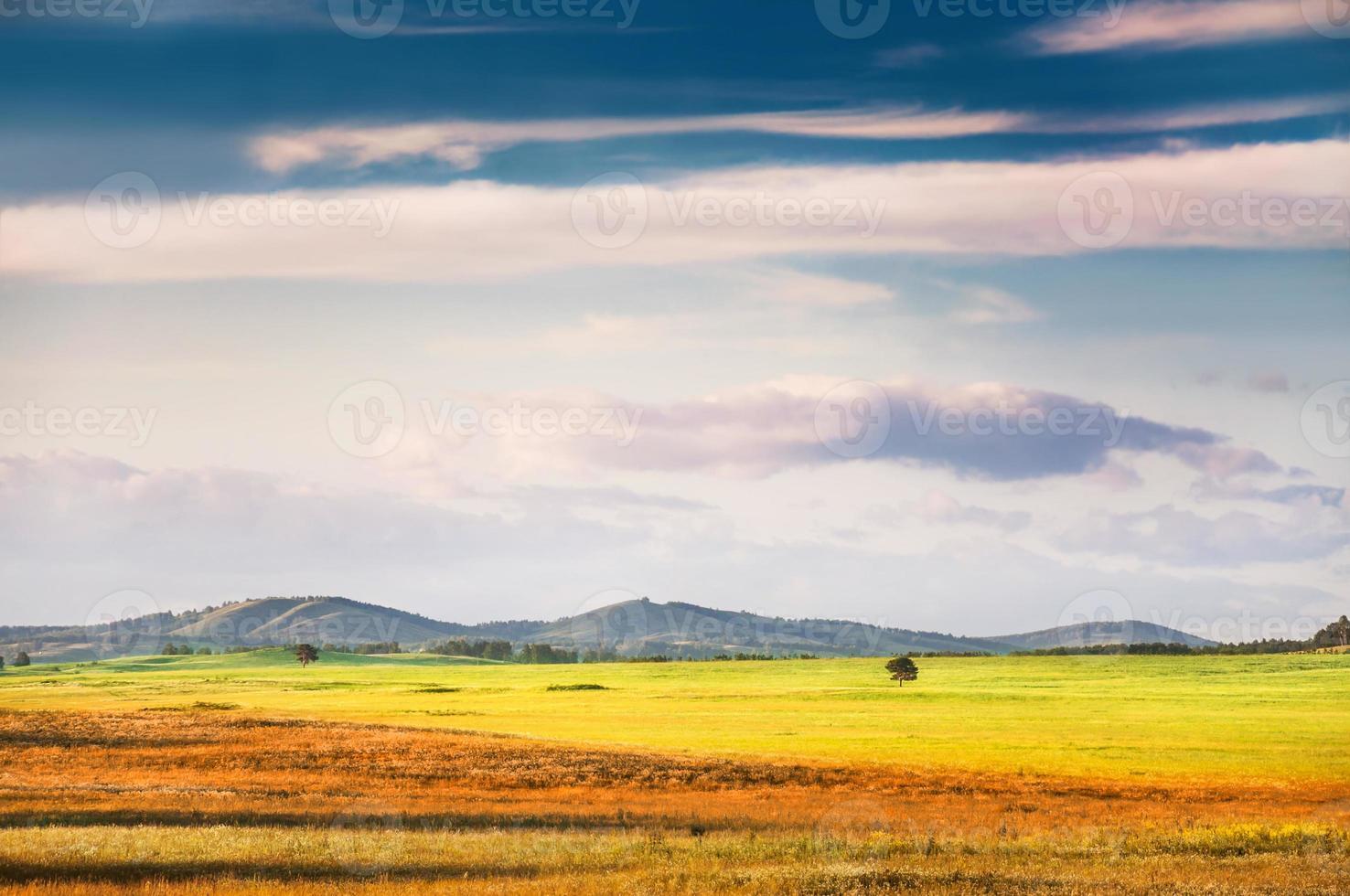 groen veld en blauwe hemel foto