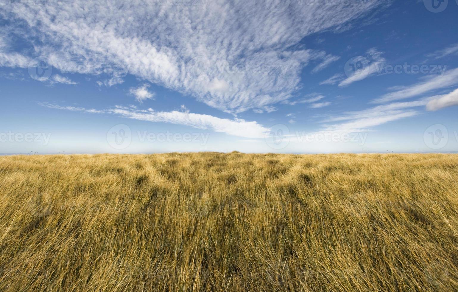 eenvoudige horizon op een blauwe hemel foto