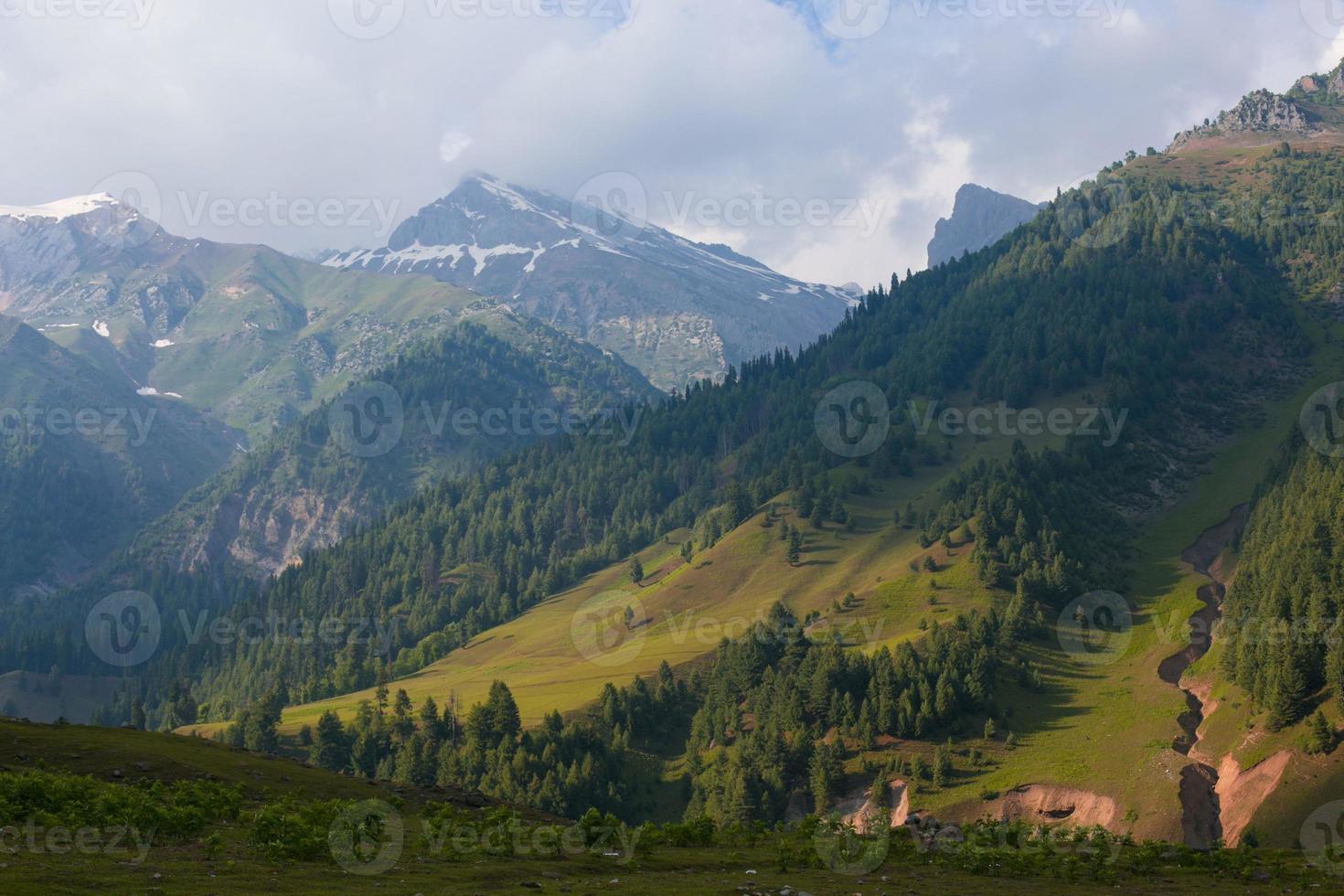 glooiende groene heuvels en een blauwe lucht foto