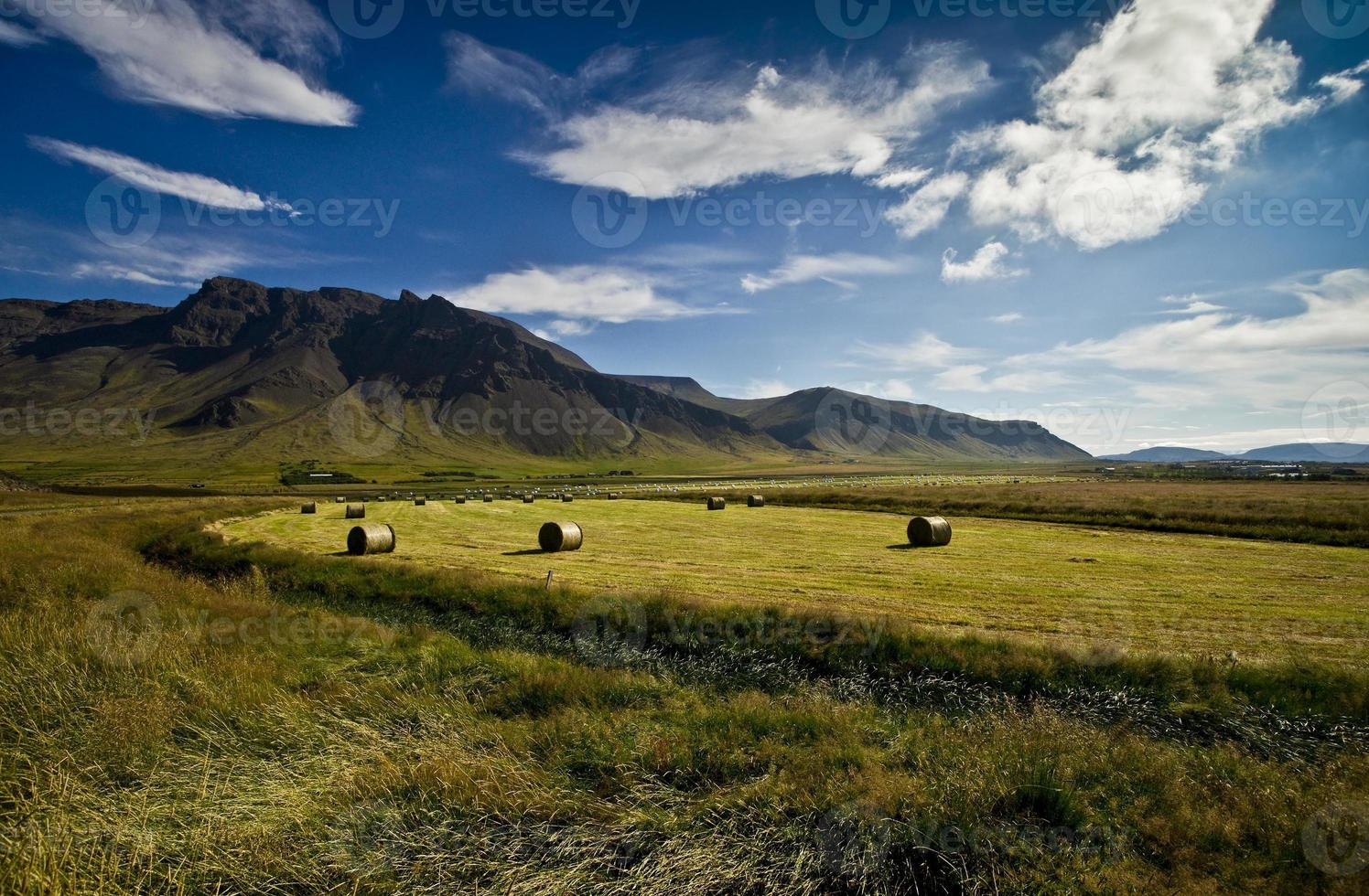 platteland foto