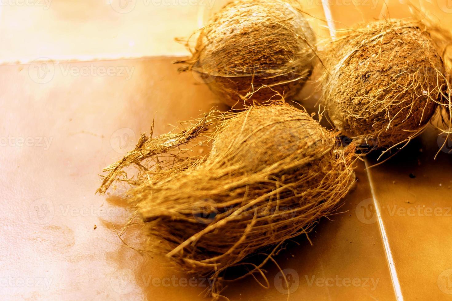 kokosnoot foto