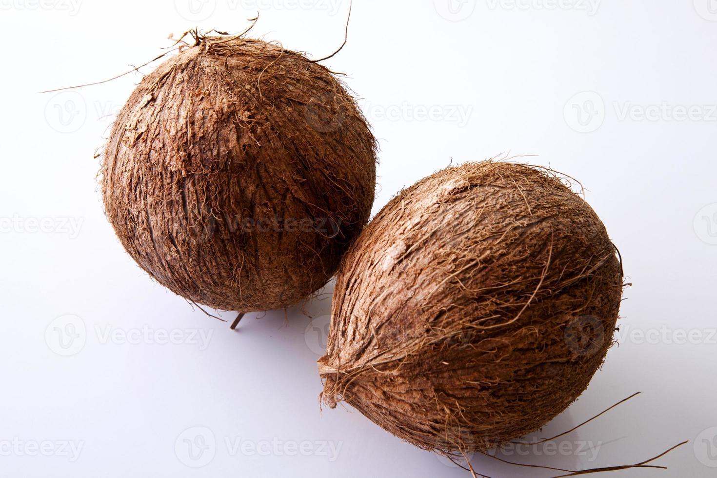 kokosnoten - heel foto