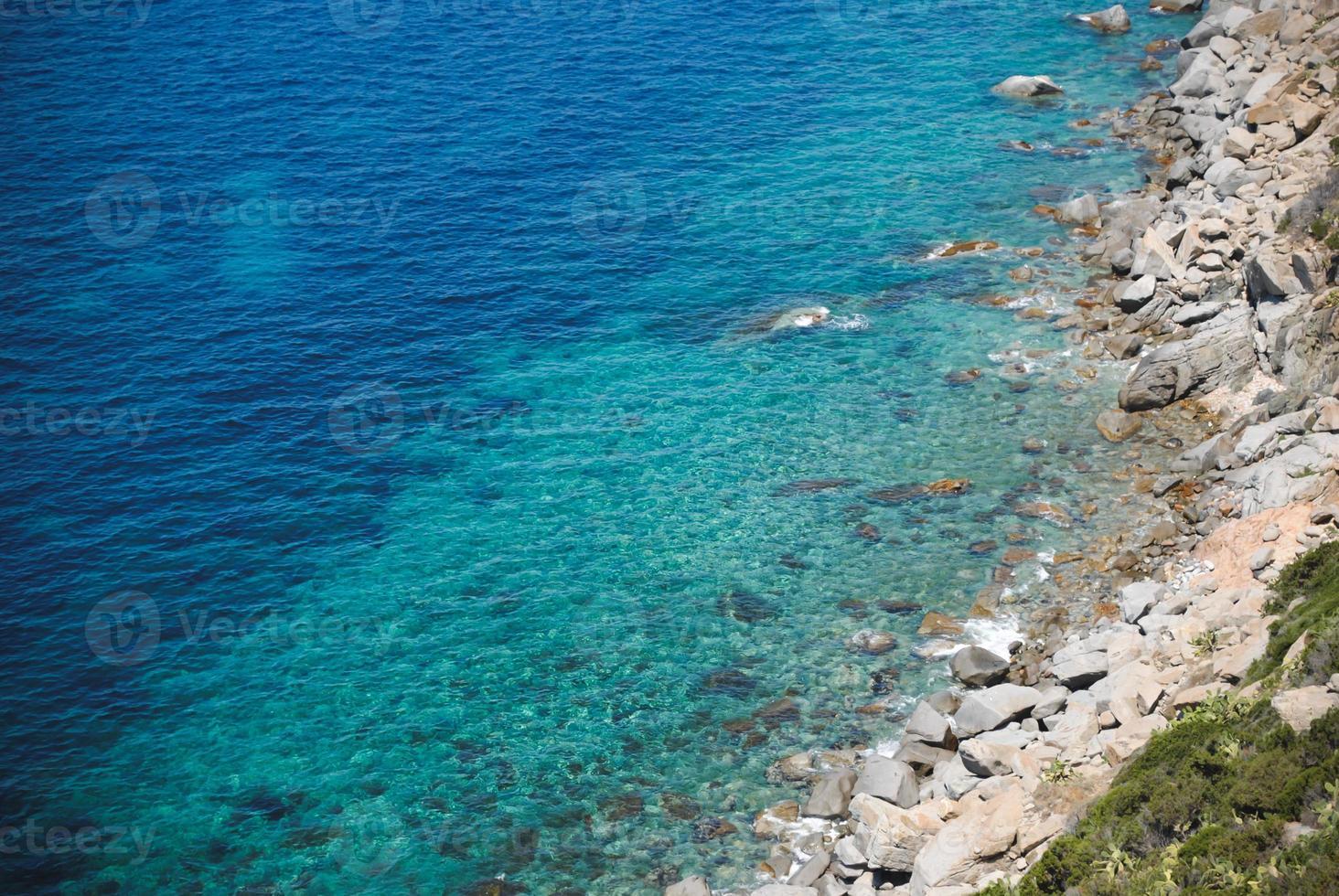 zee foto