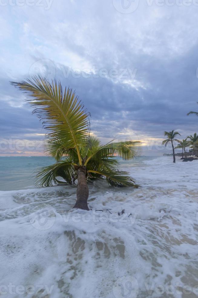 zonsopgang op het tropische strand. foto