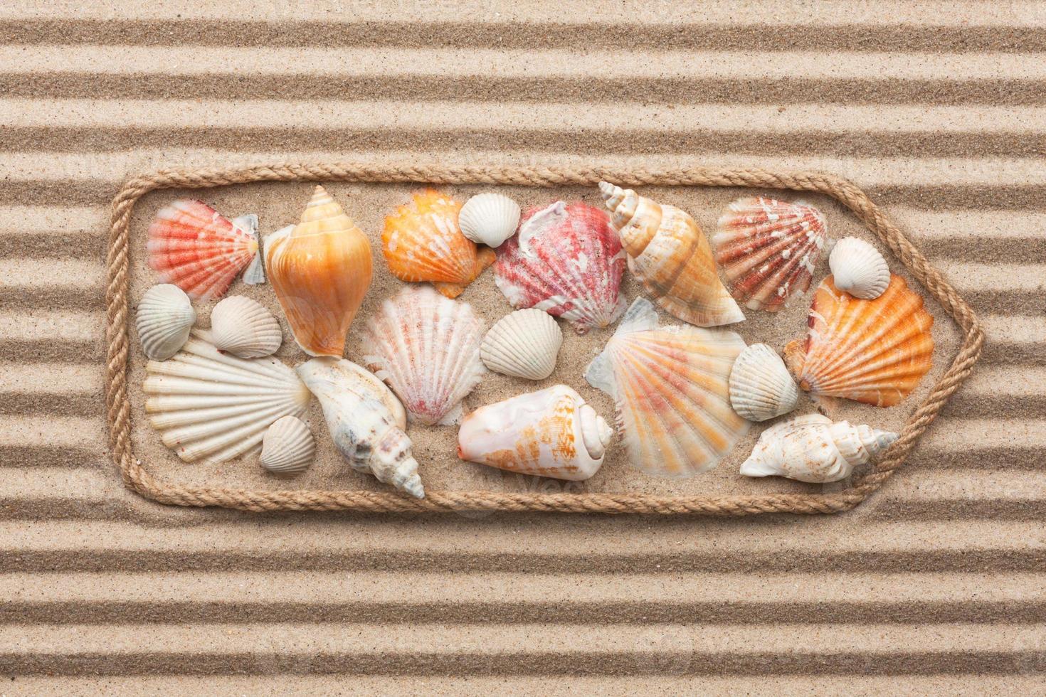 aanwijzer gemaakt van touw met zeeschelpen foto