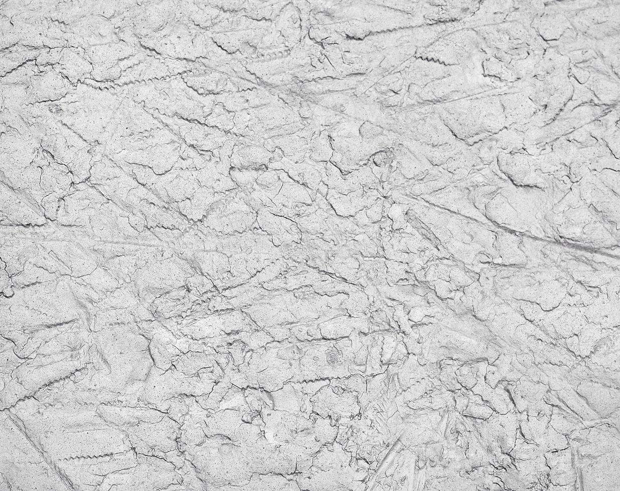 concrete textuur. foto