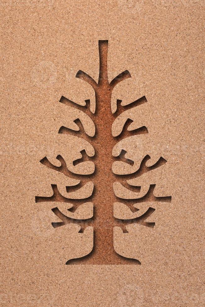 dennenboom foto
