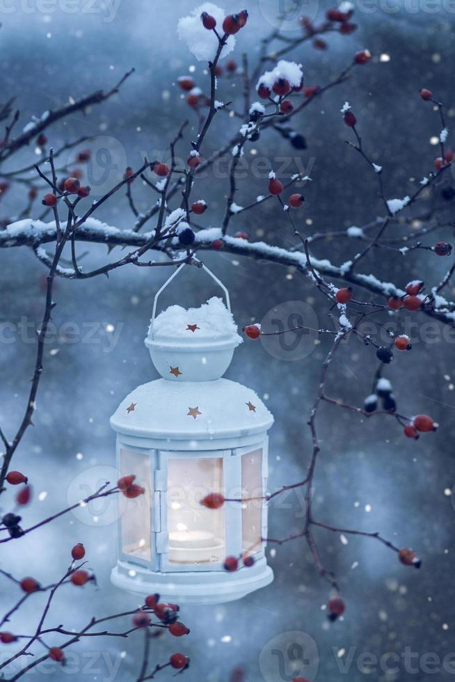 lantaarn opknoping op besneeuwde tak foto