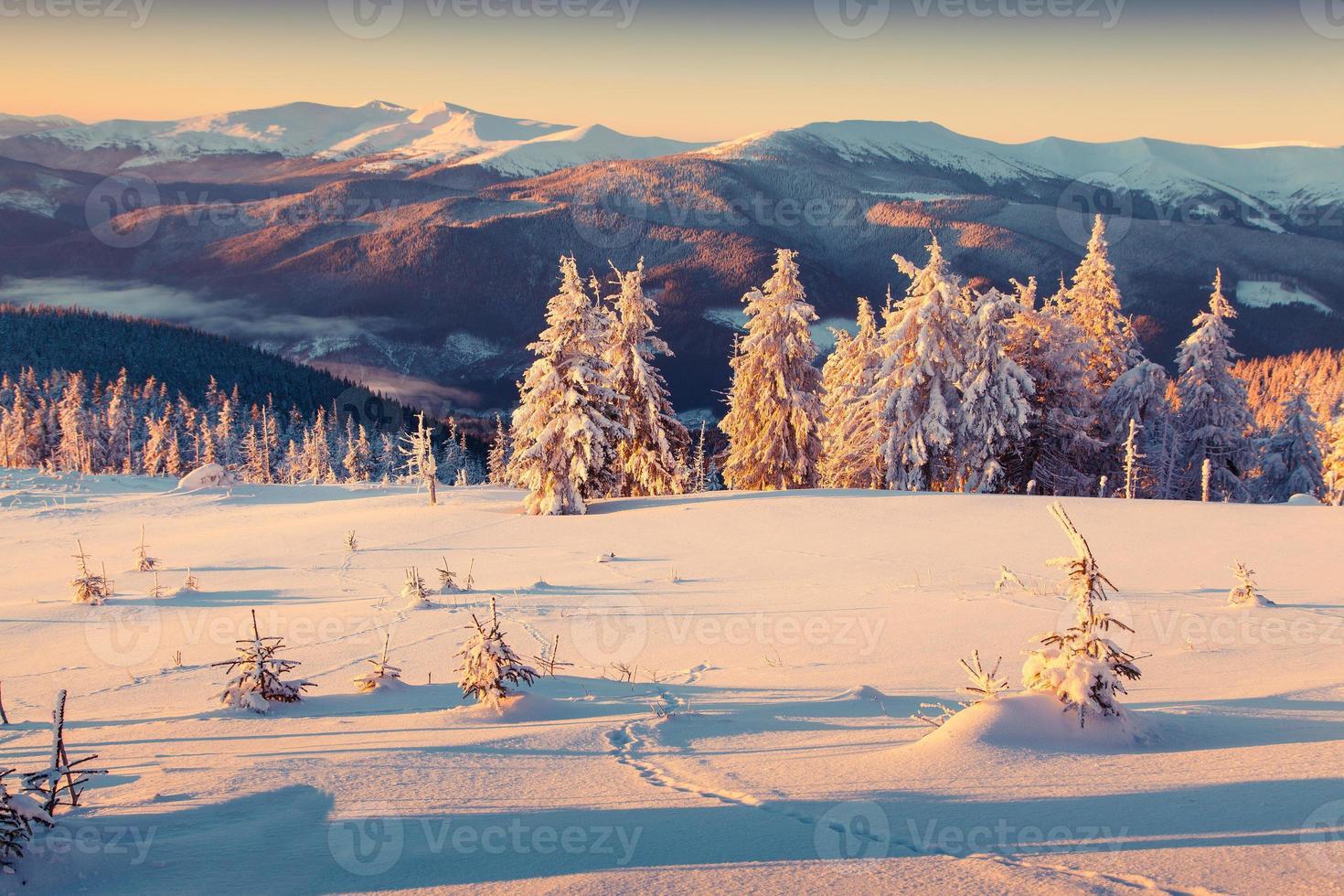zonnige ochtend zonsopgang in de bergen van de winter foto