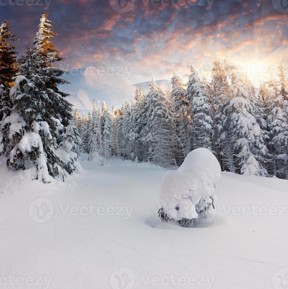 prachtige winterlandschap in de bergen foto