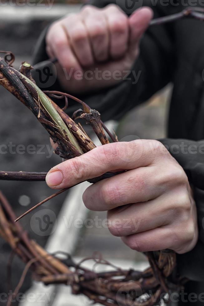 weven krans van wijnstokken foto