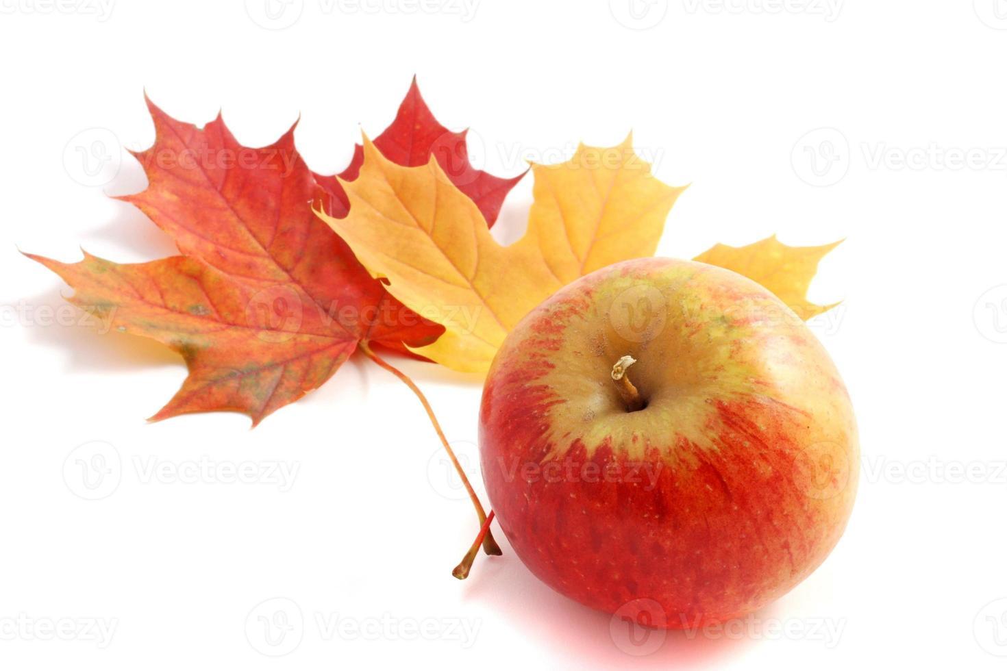 herfst appel foto