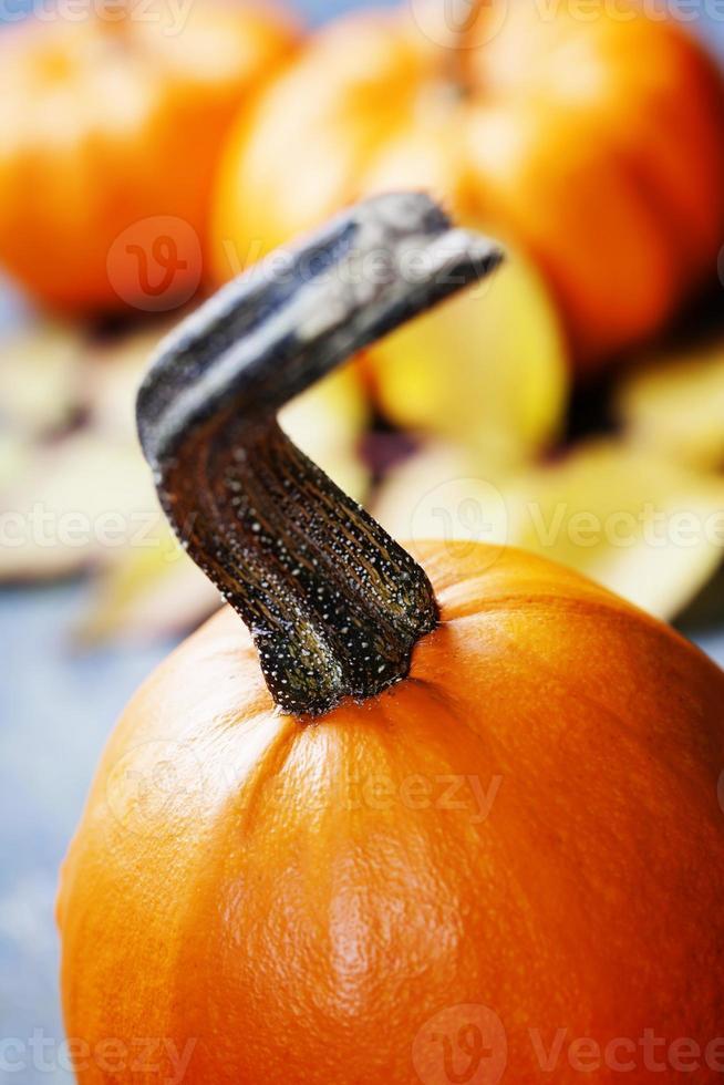 herfst pompoenen foto