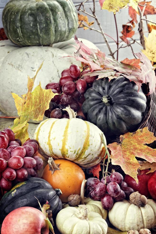 herfst hoorn des overvloeds foto