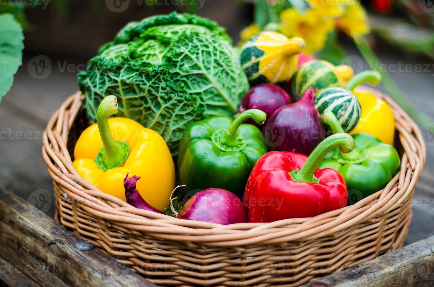 herfst groenten foto