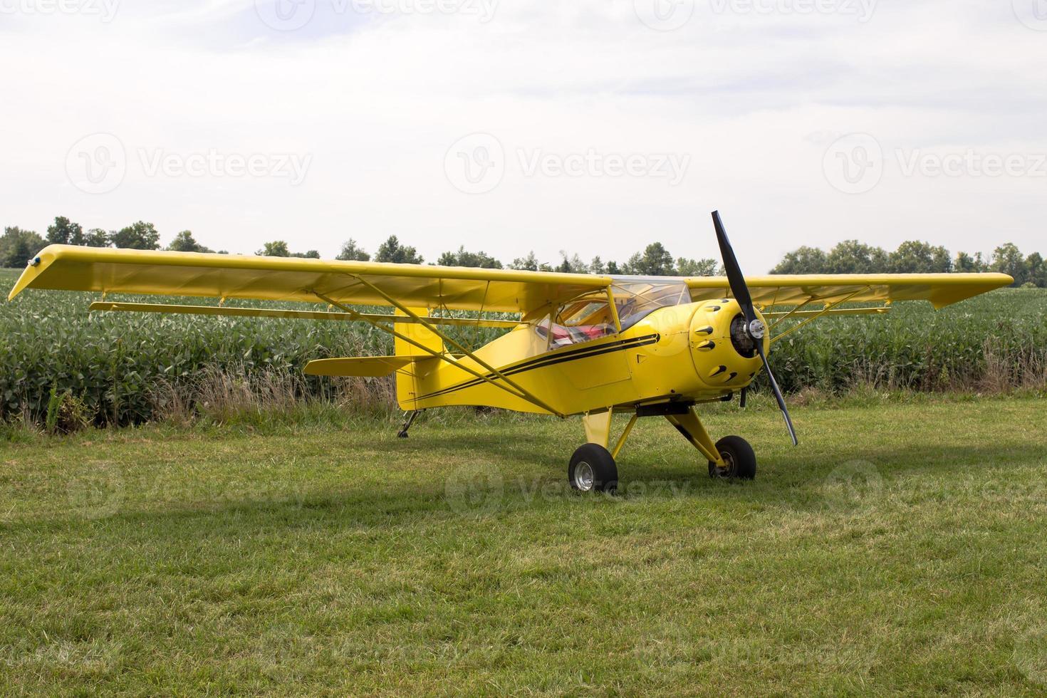 eenmotorig vliegtuig geparkeerd op gras foto