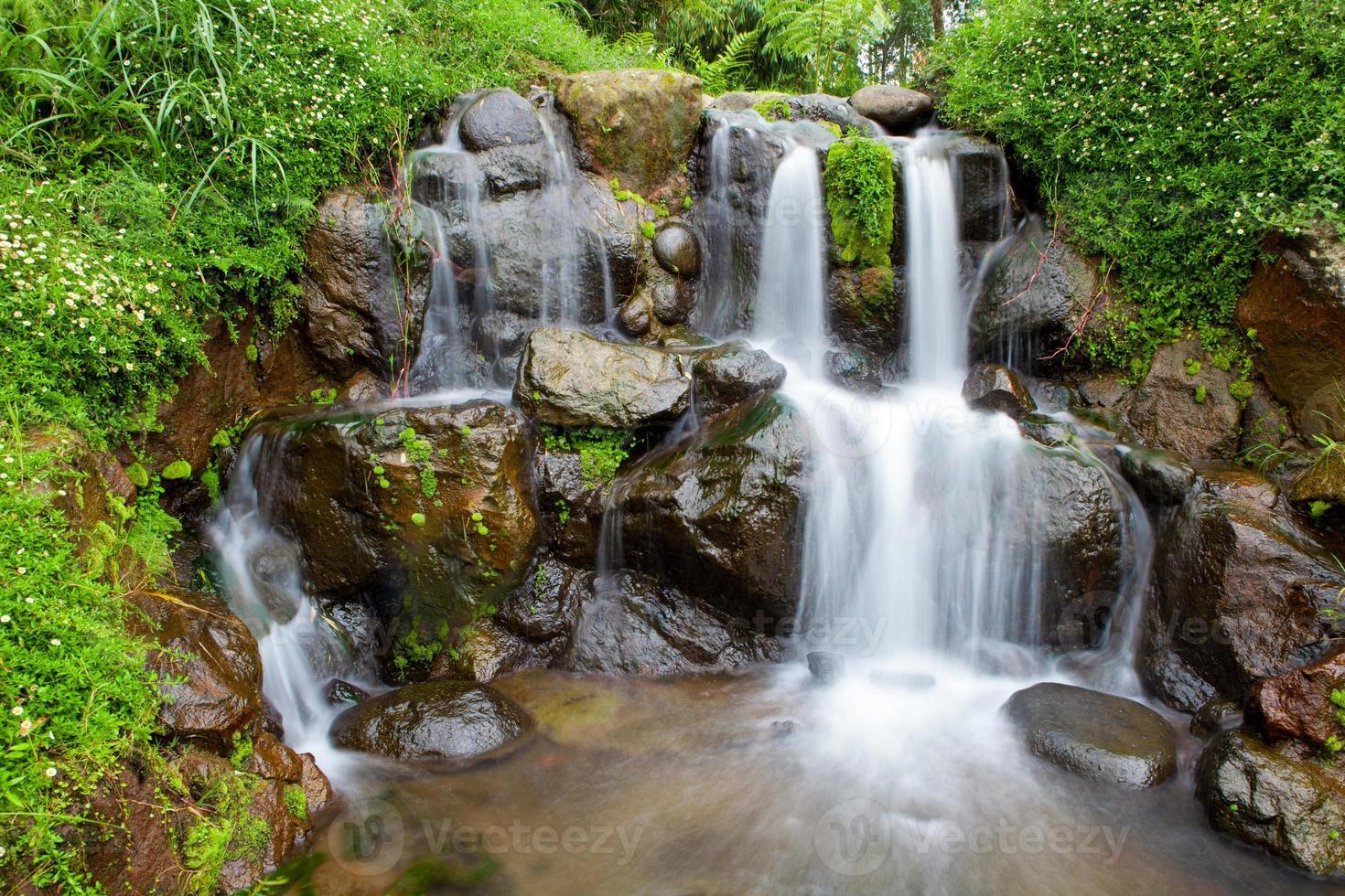 natuurtuin met kleine waterval foto