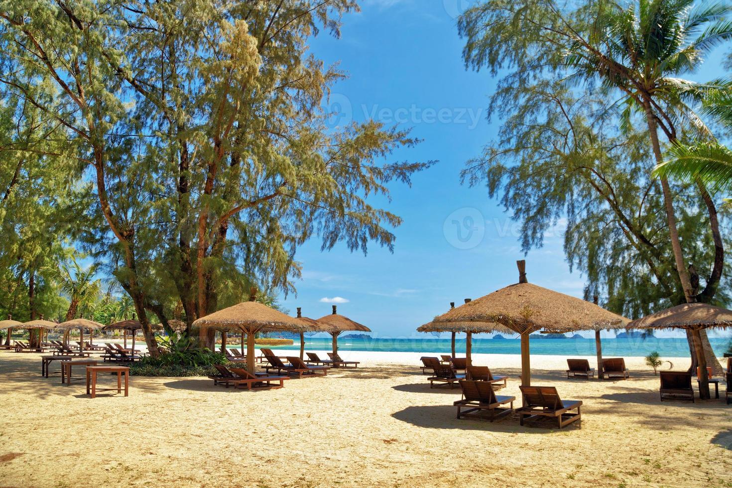 houten stoelen en parasols op wit zandstrand foto