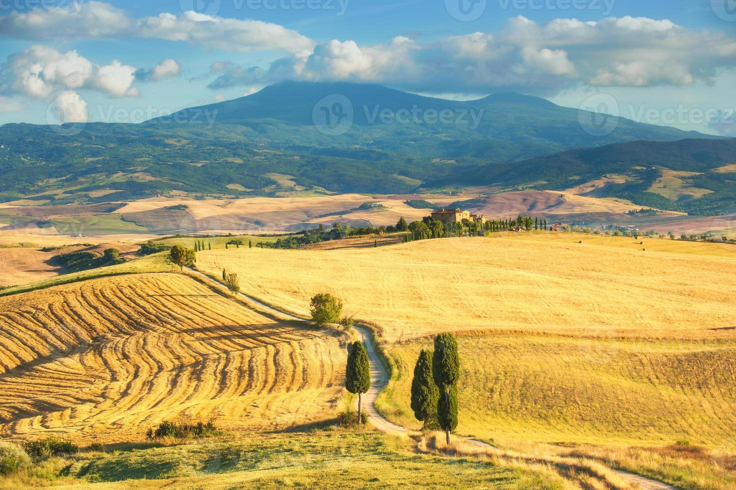 het klassieke uitzicht op Toscaanse velden rond Pienza, Italië foto