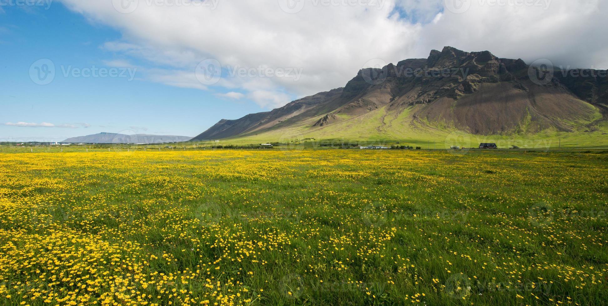 schiereiland Reykjanes in de zomer foto