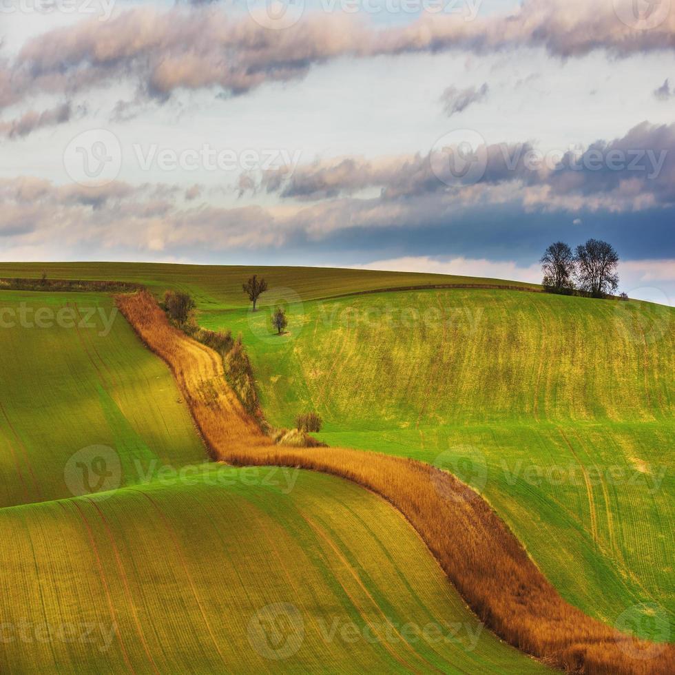 Tsjechische platteland, Zuid-Moravië. foto