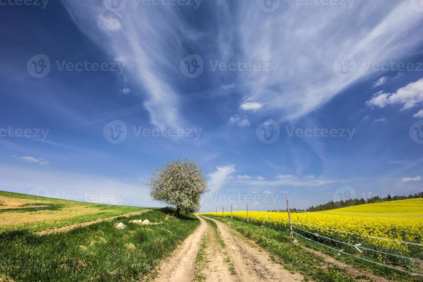 landweg. foto