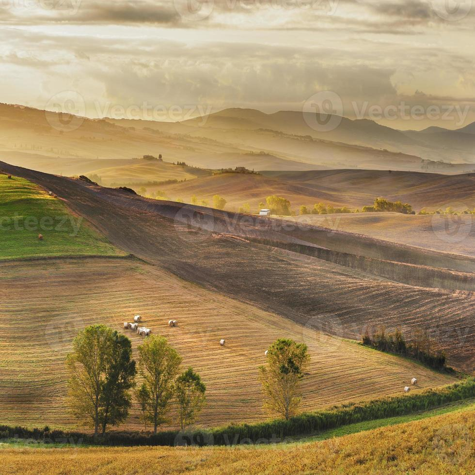 prachtig licht van de ochtendzon in het toscaanse landschap foto
