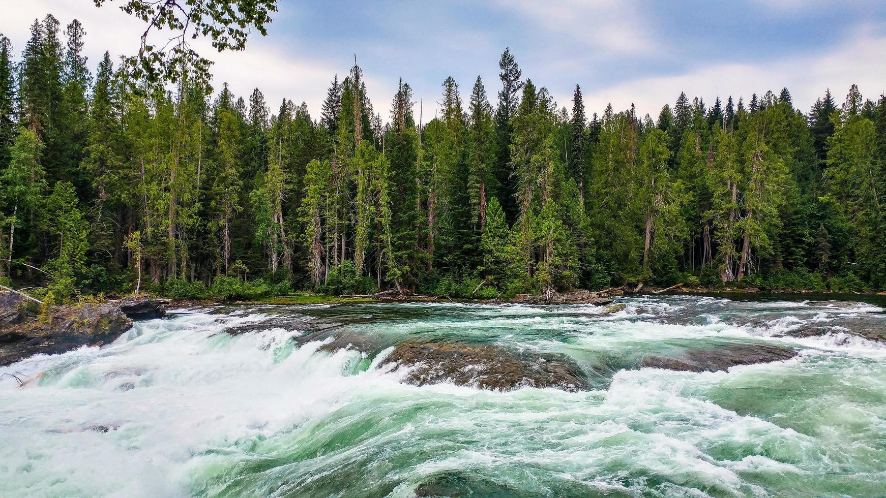 time-lapse van een rivier in de buurt van een bos foto