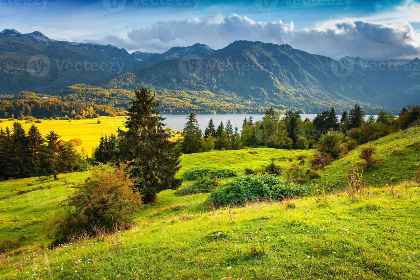 kleurrijke zomerochtend op het Bohinj-meer foto