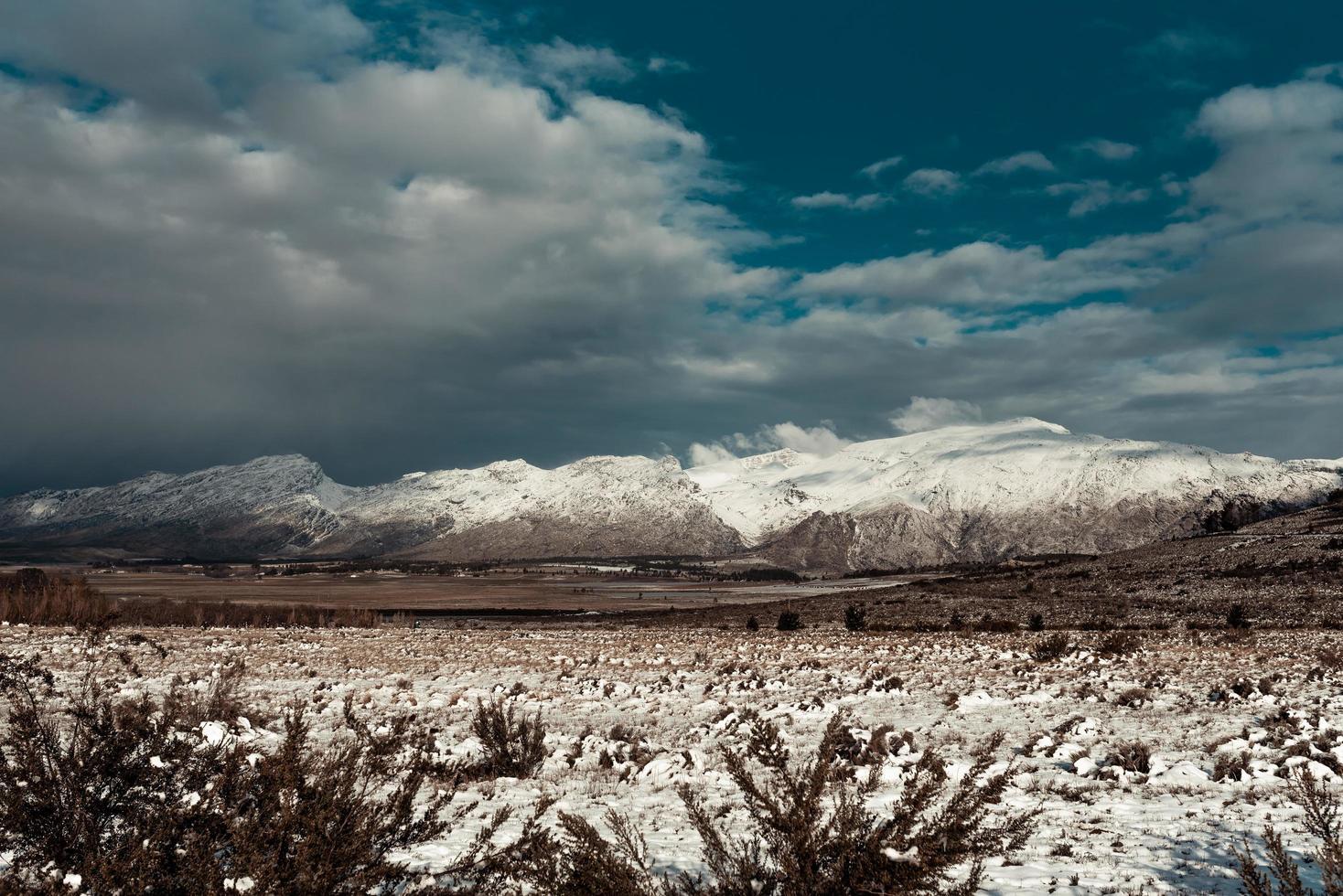sneeuw die gras en bergen bedekt foto