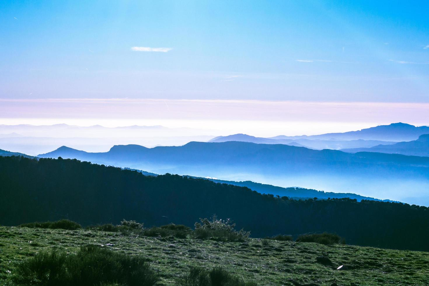 bergen en groen gras foto