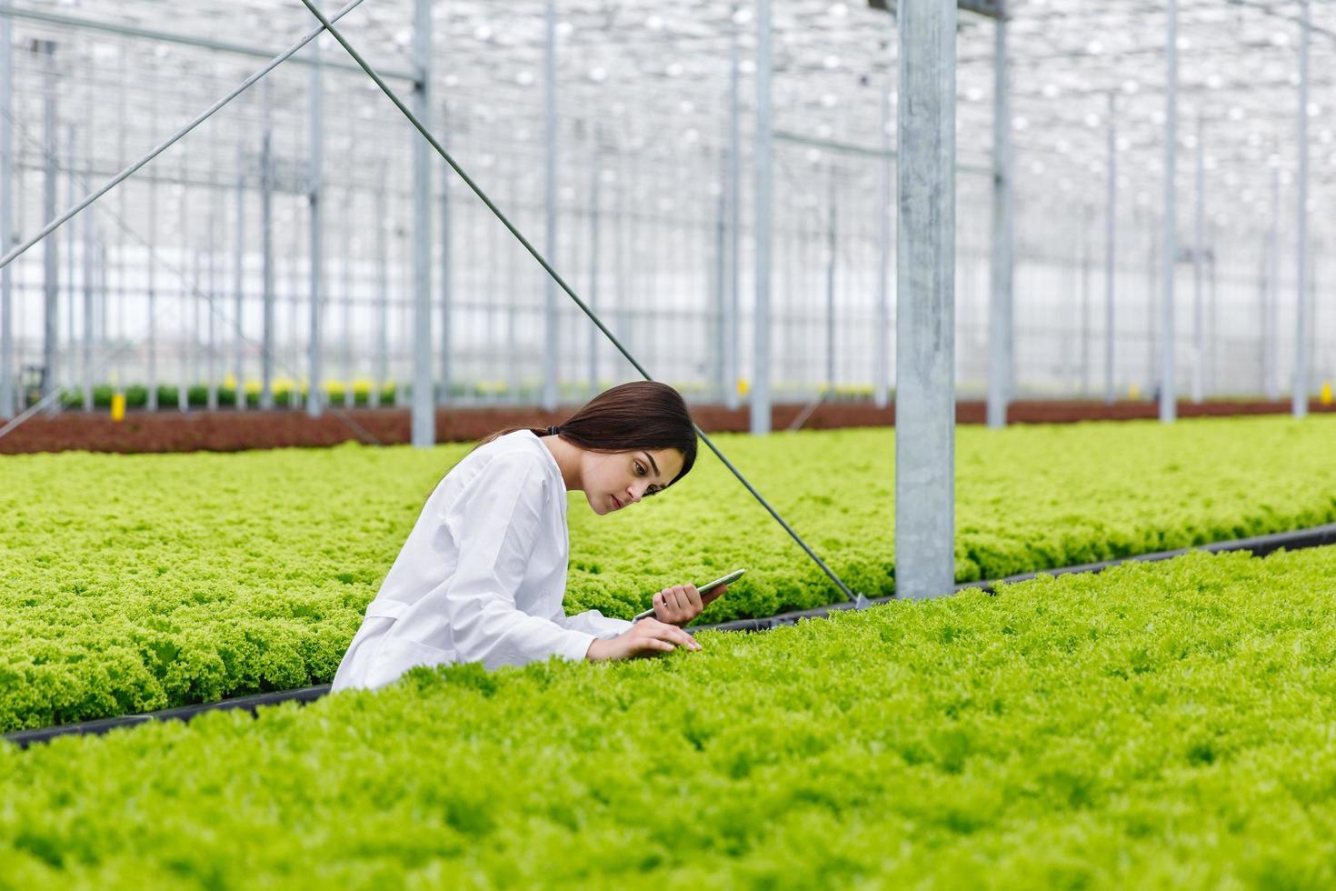 vrouwelijke onderzoeker die planten in het Greeen House bestudeert foto