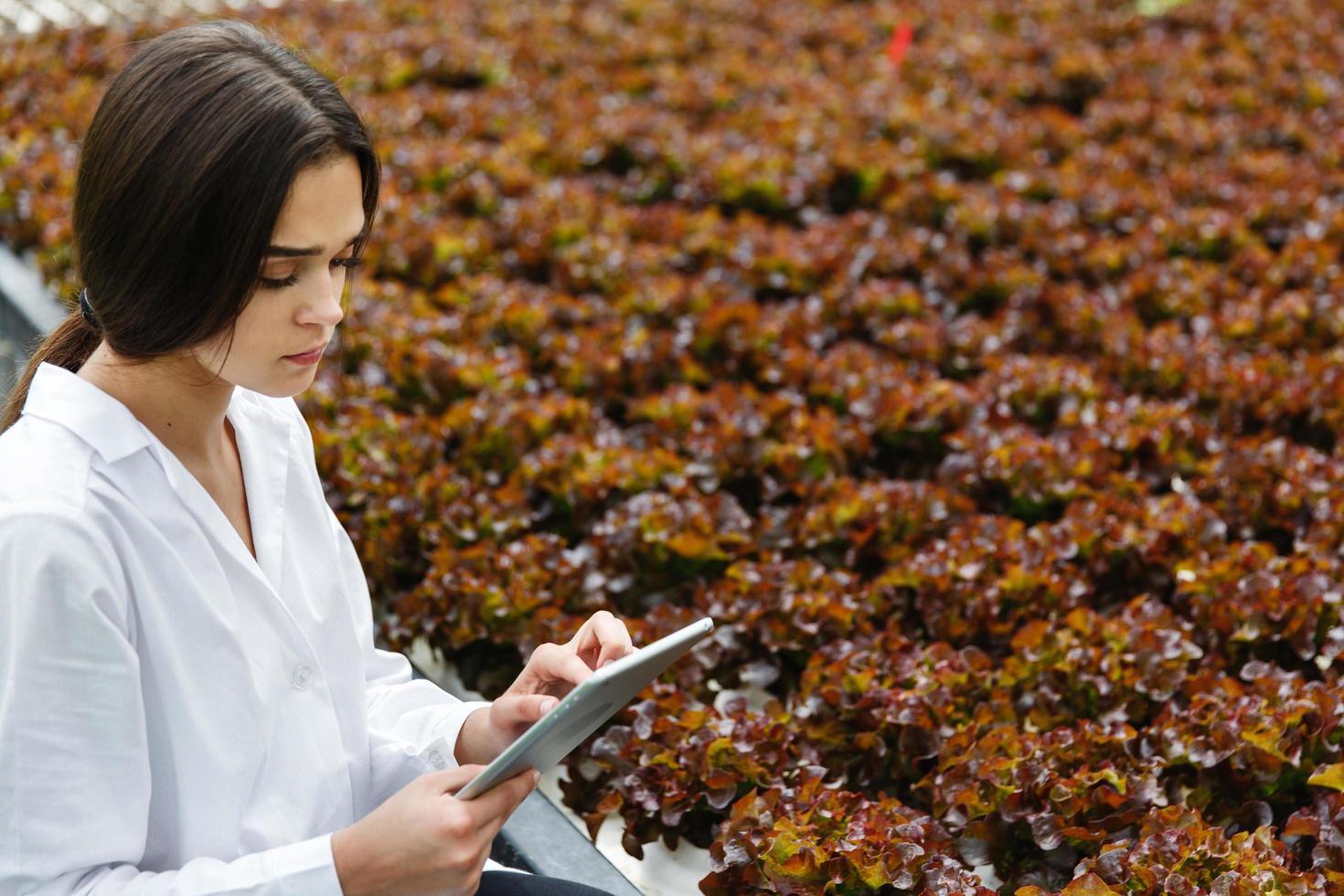 vrouw in witte laboratoriumjas onderzoekt salade foto