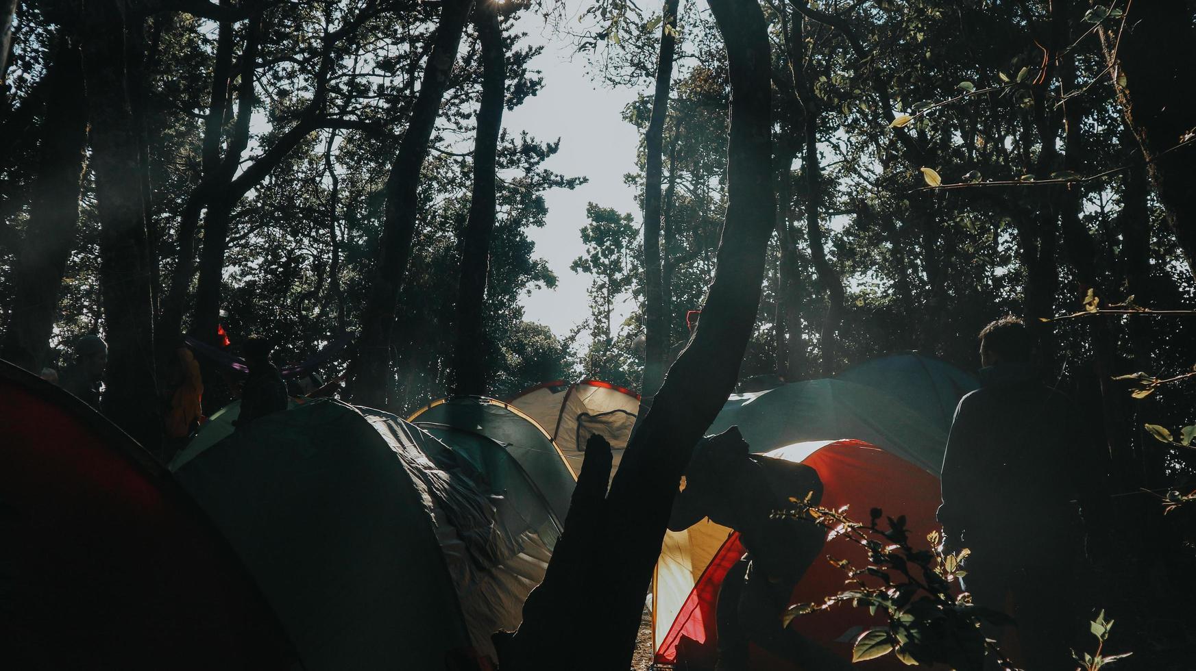 camping in het bos foto