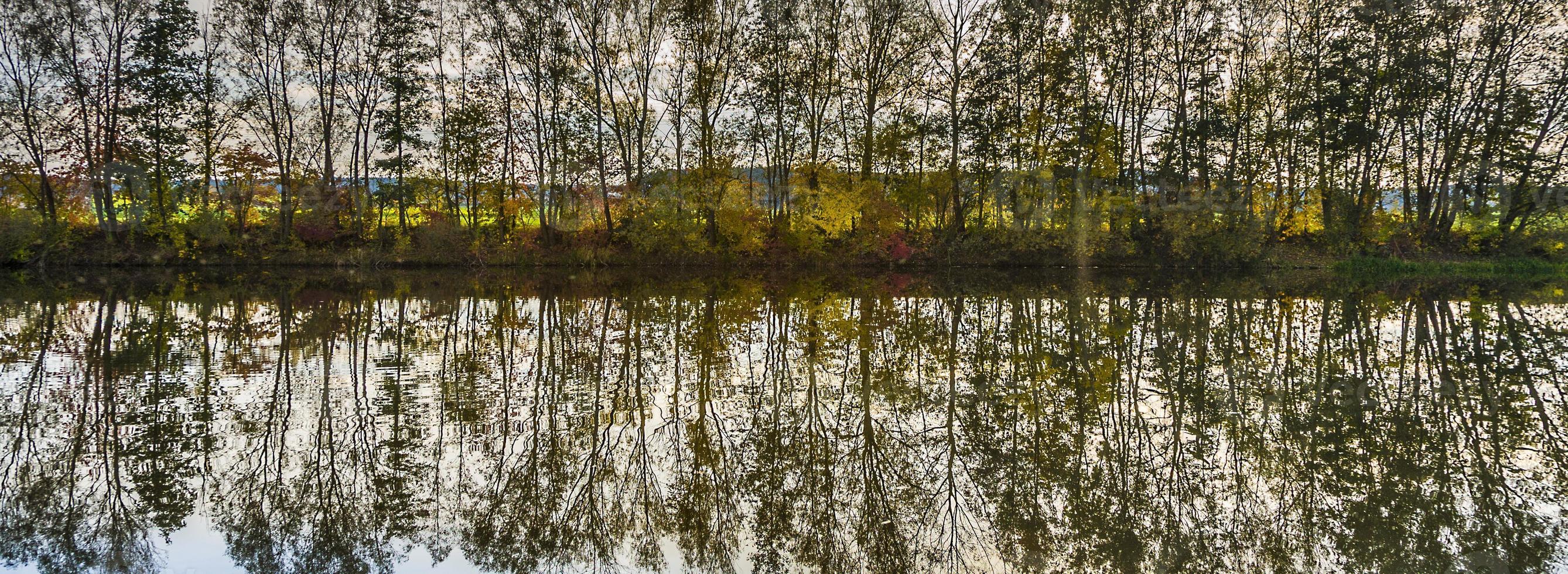 weerspiegeling van bomen in rivier tauber foto