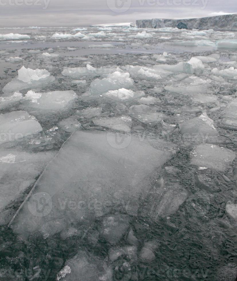 arctische gletsjers en drijvend ijs foto