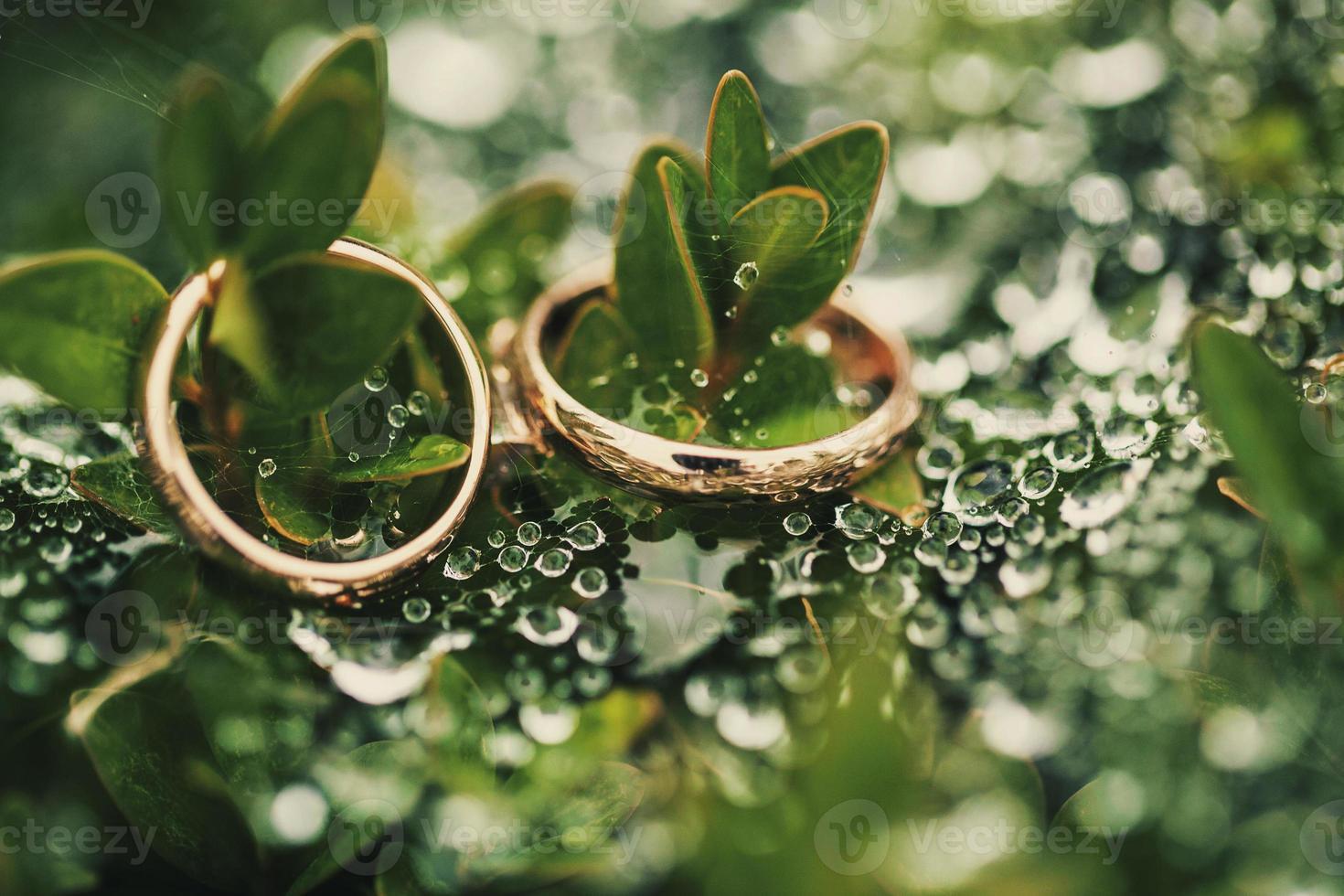 trouwring op groen foto